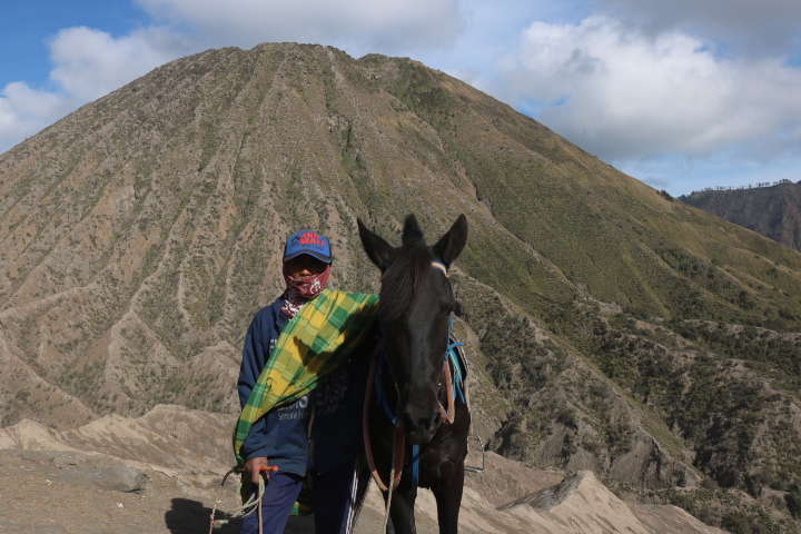 Volcan Bromo Cheval